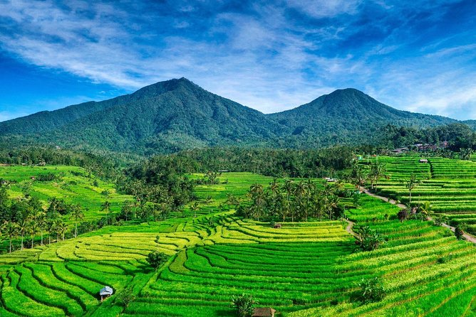 Tanah Lot - JatiLuwih (UNESCO) - Ulun Danu Temple - Wanagiri Hill - Free WiFi
