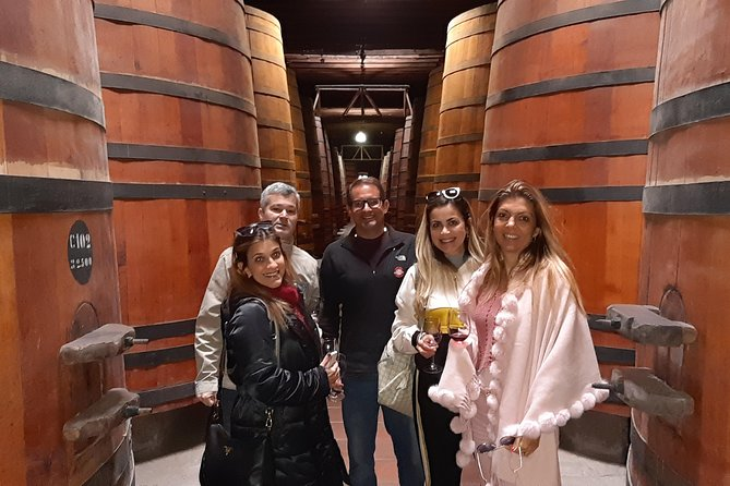 Private Full-Day Santiago City and Wine Tour