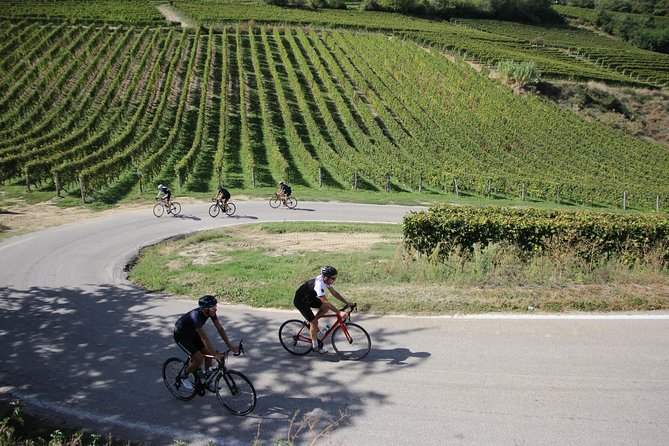Guided six day cycling tour to Piemonte Italy featuring Pinarello bikes photo 9