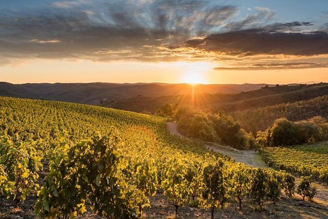 Small-Group Chianti Valley Castles - Wine & Food Day Trip from Florence
