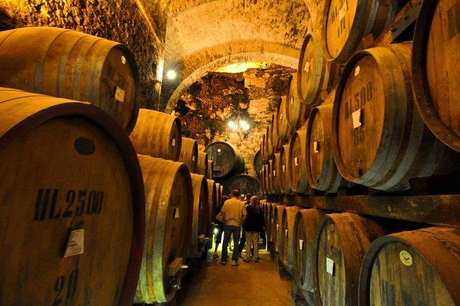 Montalcino & Montepulciano - Ultimate VIP Brunello, Rosso e Nobile Wine Tastings
