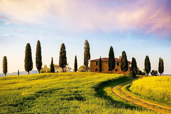Full Day Wine & Food Tour to 3 Wineries in the Famous Chianti Region