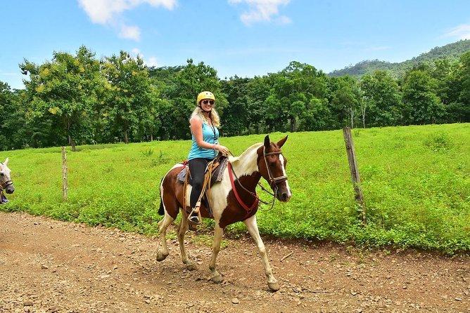 Horseback Riding + Chocolate Experience