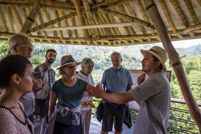 Coffee Tour at Hacienda Venecia near Salento