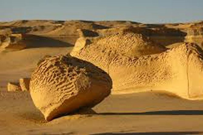 Fayoum Full Day Private Guided Tour from Cairo