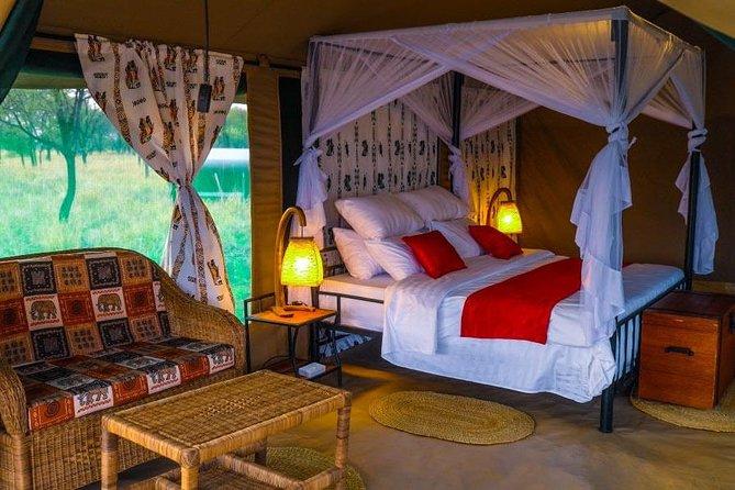 6 Days Lodge and Tented Safari Northern Tanzania