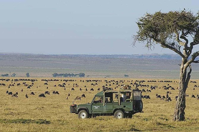 10 Days Africa Photographic Safaris Package