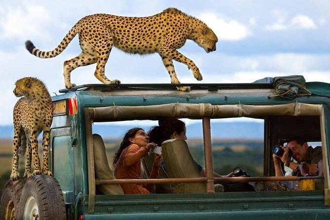 12 Days Kenya wildlife Photographic Safari Holidays