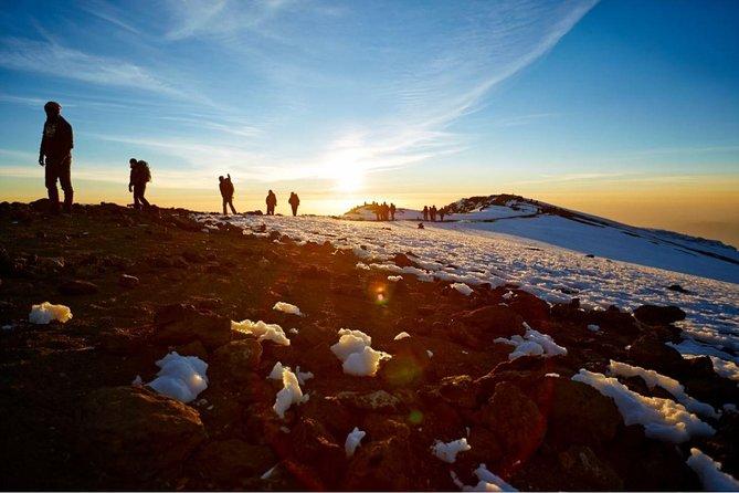 Kilimanjaro in 1 day