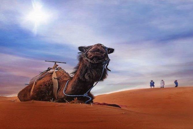Fez to Fez 2 days desert tour