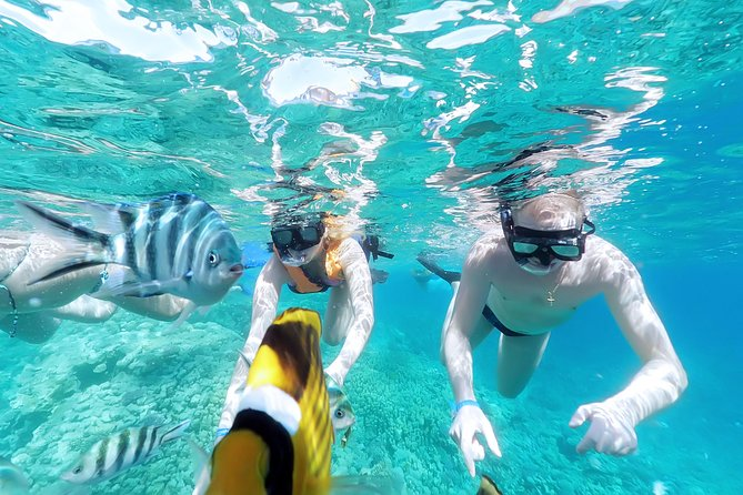 4 Hours Orange Island By Speed Boat With Water Sports - Semi Private - Hurghada photo 8