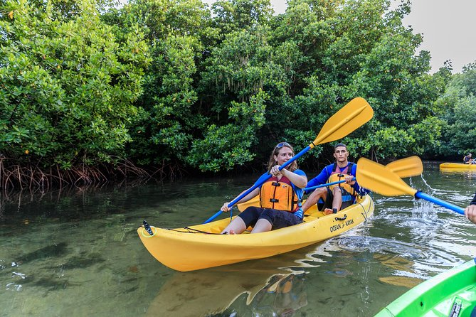Rainforest, Bio Bay, Luquillo Beach Trio Tour