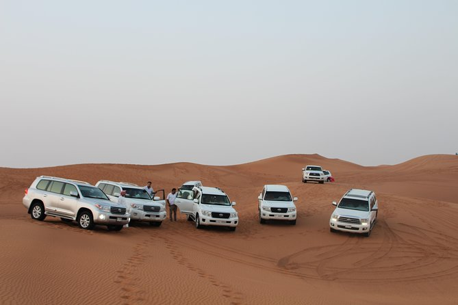 Evening Desert Safari on Red Dunes + Sandboarding + BBQ Dinner & Entertainment
