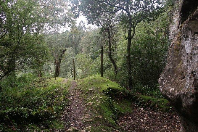 Fetal Caves Trail