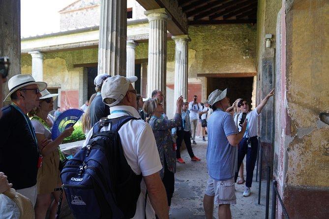 Private Tour of Pompeii and Mt Vesuvius from Sorrento