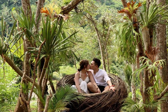 Ubud - Waterfall - Jungle Swing - Monkey Forest - Rice Terrace - Free WiFi