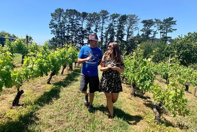 Kumeu Wine Adventure