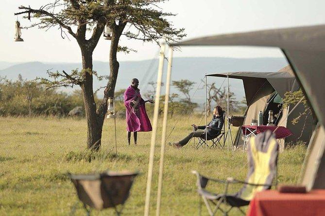 4 Days Budget Tanzania Action Safari