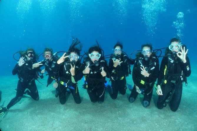 Introduction Dive
