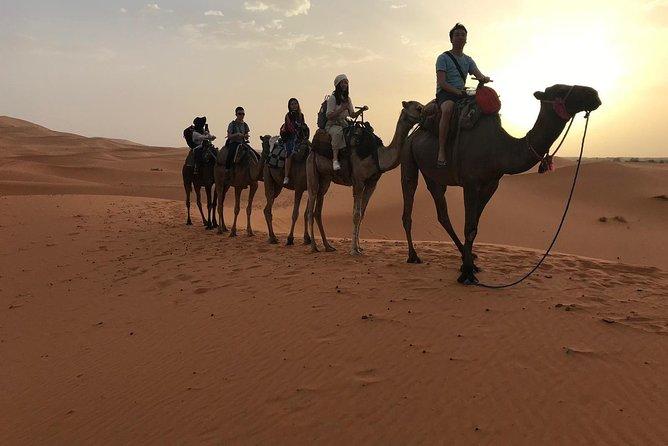 2 Days luxury desert tour from Fes