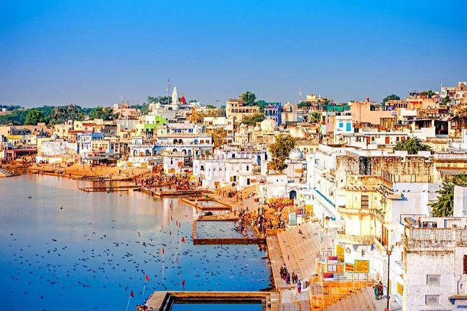 Day tour from Jaipur to Pushkar without Guide