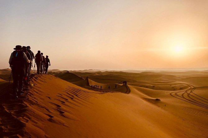 Desert Dune Walks