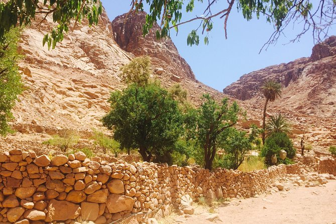 From Sharm: Mount Moses Trekking, Sunrise & Monastery Visit photo 7