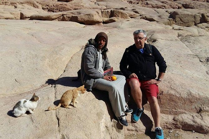 From Sharm: Mount Moses Trekking, Sunrise & Monastery Visit photo 3