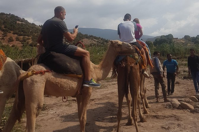 Atlas Mountains Trip Day And Camel Ride