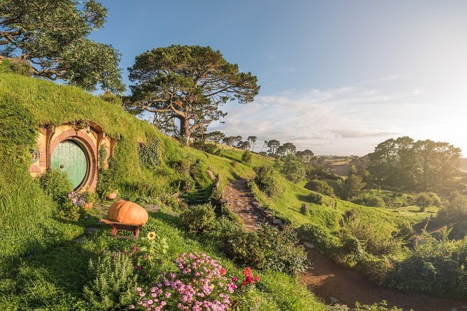 Hobbiton Movie Set & Waitomo Caves from Auckland (Adults Only)