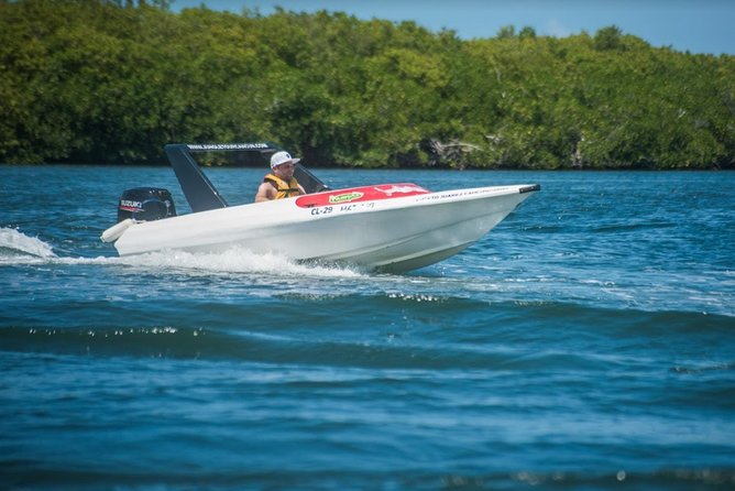 Jungle Tour Adventure cancun: Speed Boat and Snorkeling (GO SOLO)
