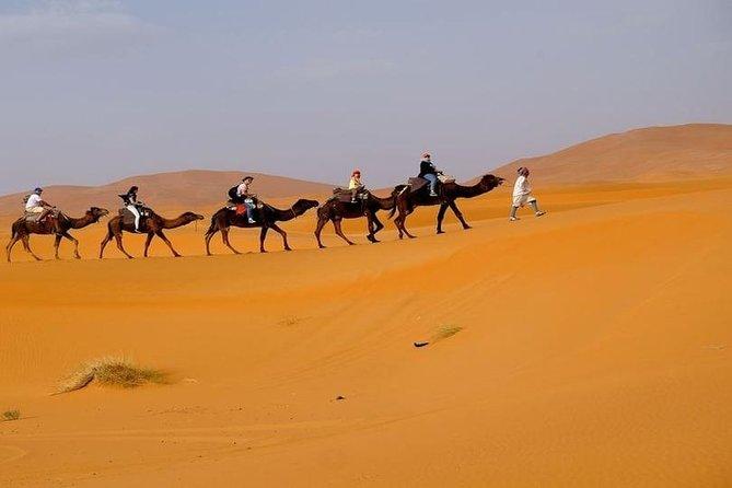 Small Group Marrakech desert Fes 3days
