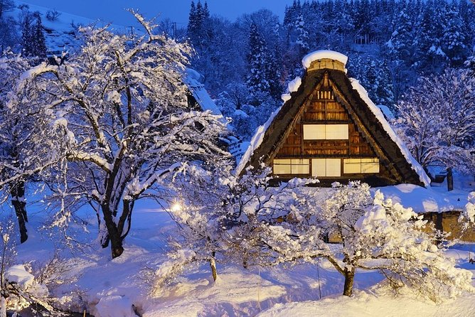 Shirakawago & Gokayama Charter Car Tour (Takayama departure) with Private Driver