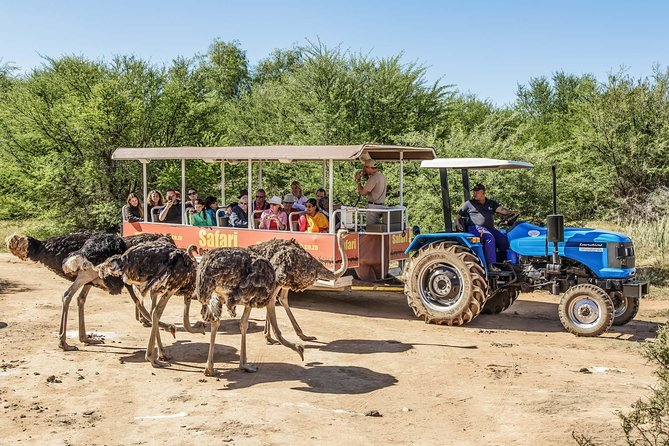 5 Day Garden Route, Safari and Cape Agulhas