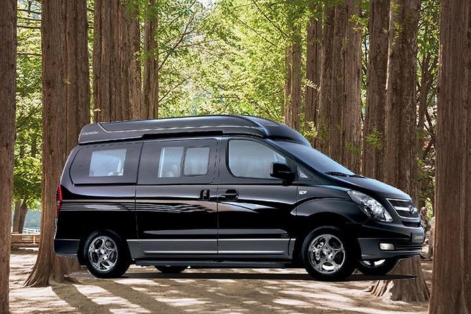 Private Van Tour to Nami Island, Petite France & More (Up to 10 or 16 pax)