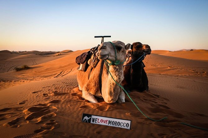 4 Days Private Desert Tour From Agadir And Return