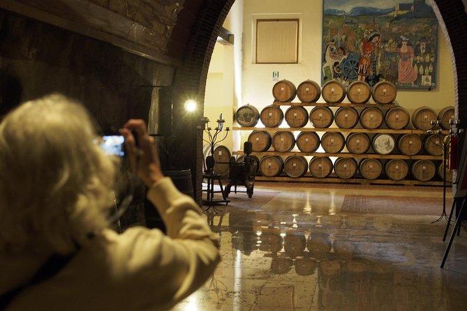 Wine Tour in Bardolino area from Lake Garda