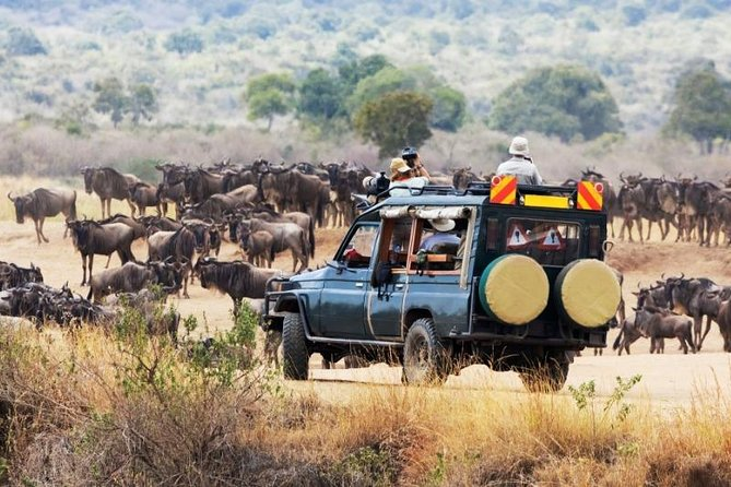 11 Days Kenya Photographic Safari
