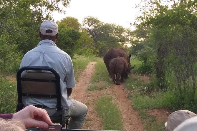 5 Day Kruger to Coast Wildlife Discovery