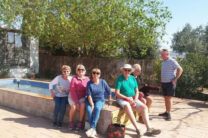 Olivas Querencia Extra Virgin Olive Oil, olive tree adoptions & grove visits. photo 8