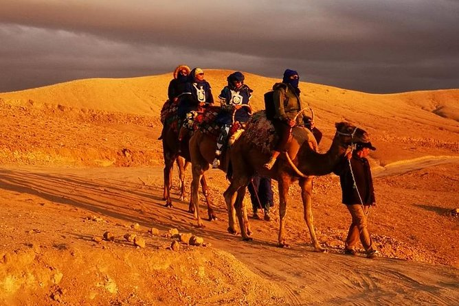 Experience of the desert of Zagora in 2 days