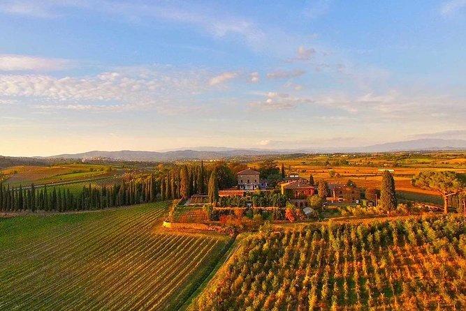 Arezzo: Wine Tasting Experience in Valdichiana area