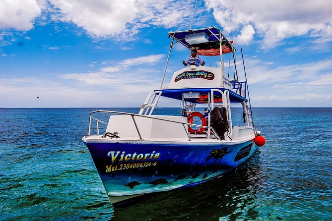 Private Boat Charter Tour in Cozumel photo 12