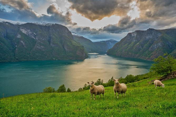 PRIVATE GUIDED TOUR: Norway's Highlights – Viking Special, 11-12 hours – SUMMER