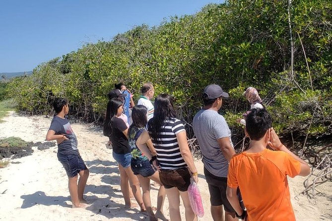 Charles Darwin Station & Tortuga Bay Beach Day Tour with Lunch