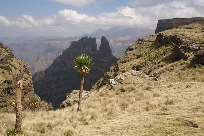 14 Days Northern Ethiopia Tour Package (Danakil, Gondar, Axum and More) photo 4