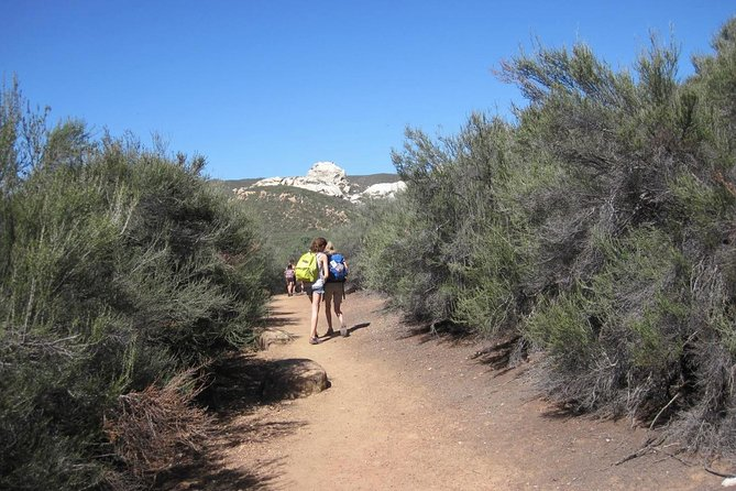 Los Padres 3-Day Guided Backpacking Expedition from Ojai