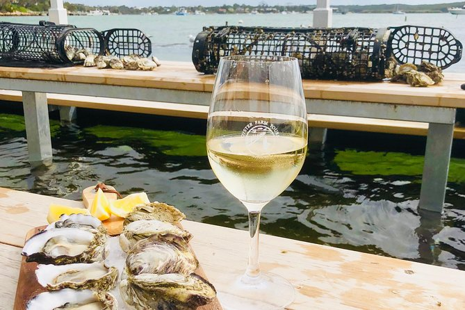 Coffin Bay Oyster Farm & Tasting Tour