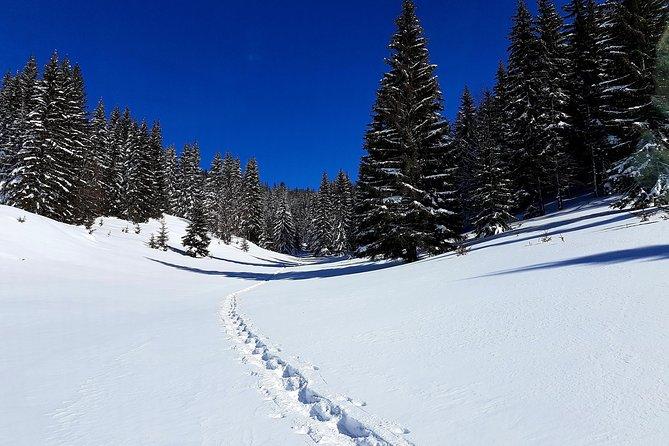 Snowshoeing fun in Kosovo