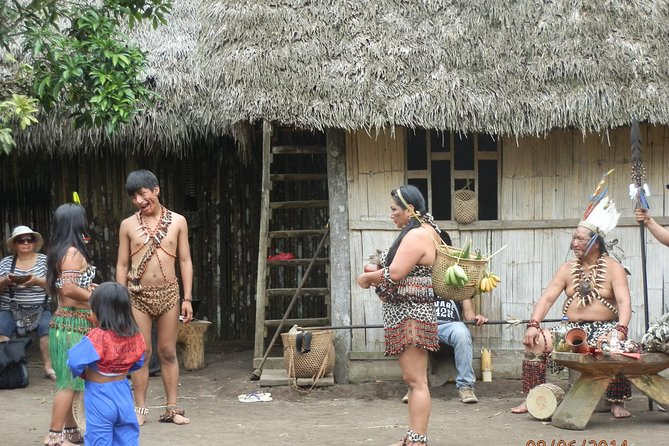 Tours to the Amazon - Jungle For a Day Various Activities All Inclusive